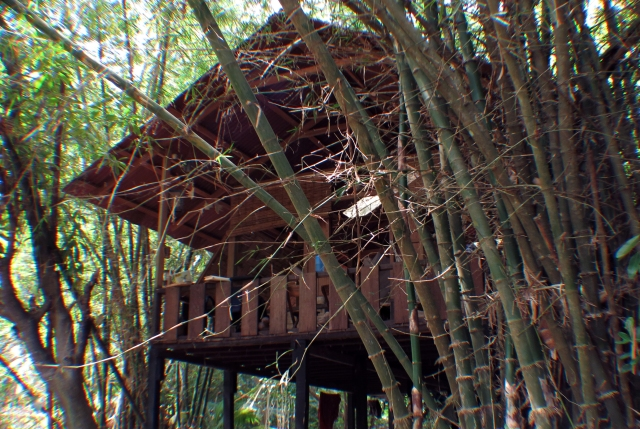 A cottage built in Karen style architecture at ANET field station in the Andamans.
