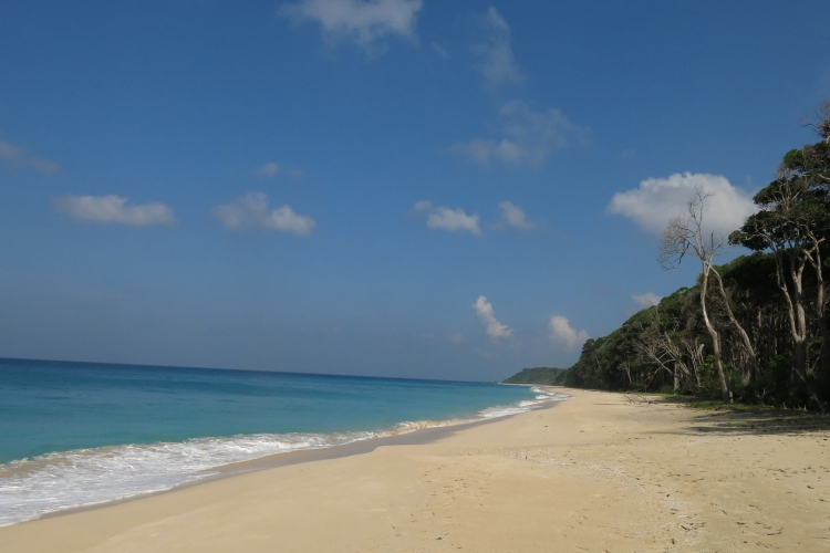 A view of pristine Jahji beach.JPG