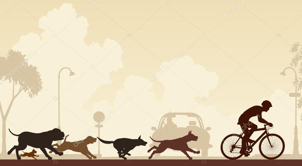 depositphotos_26087233-stock-illustration-dogs-chasing-cyclist